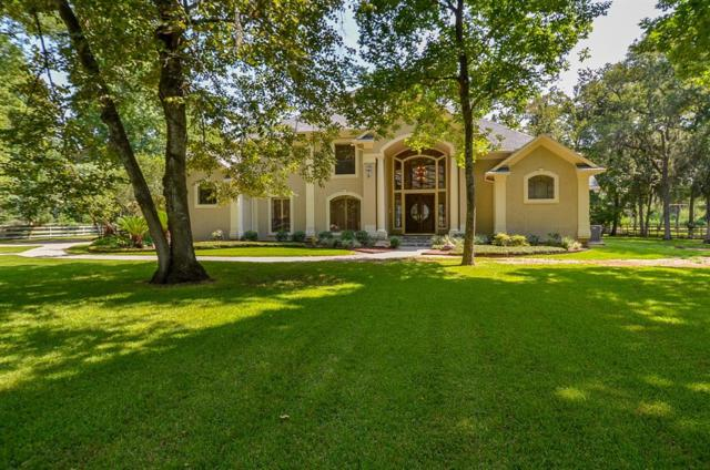 3218 River Forest Drive, Richmond, TX 77406 (MLS #71832719) :: The SOLD by George Team