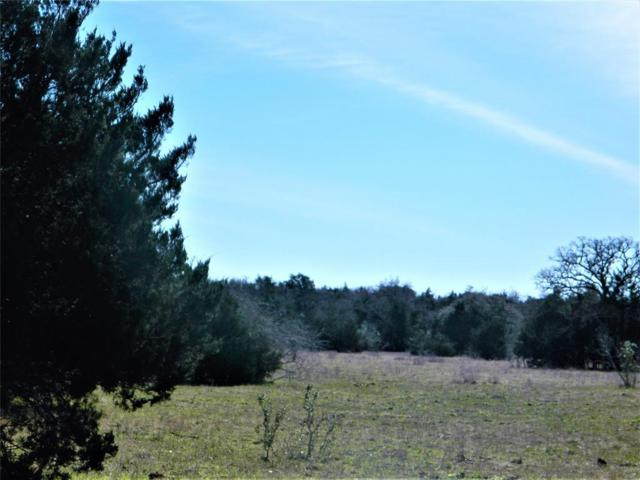1501 Bell Settlement Road, Ledbetter, TX 78946 (MLS #71834135) :: The Bly Team