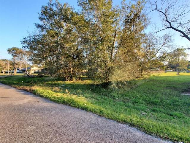 0 County Road 582A, Brazoria, TX 77422 (MLS #71889067) :: Lerner Realty Solutions