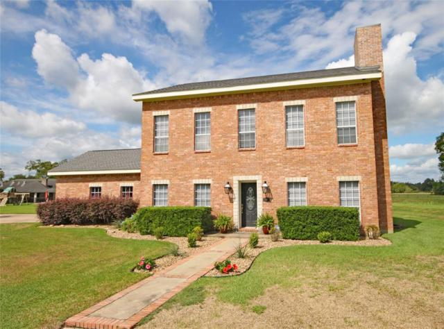 10 Olympia Court, West Columbia, TX 77486 (MLS #71892810) :: The SOLD by George Team