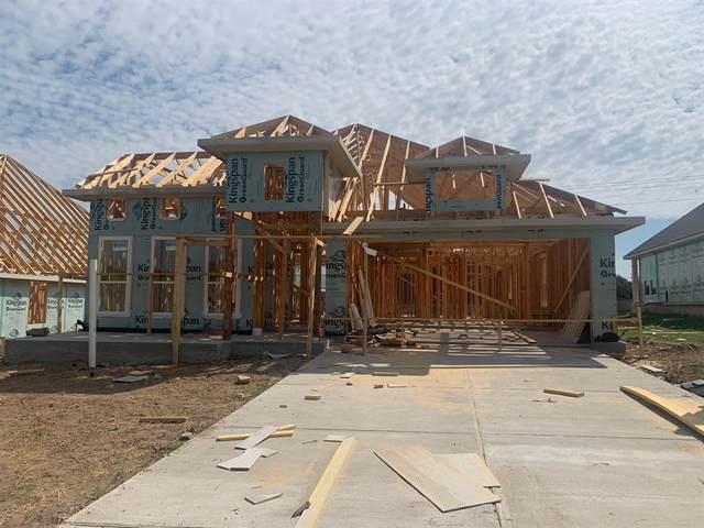 924 Wild Vine Pass, Brenham, TX 77833 (MLS #71919982) :: The Home Branch