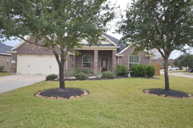 28611 Wing Elm Drive, Katy, TX 77494 (MLS #7195772) :: Texas Home Shop Realty