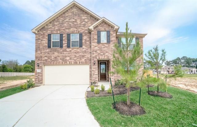9734 Hazel Fern Court, Spring, TX 77379 (MLS #7202498) :: The Home Branch