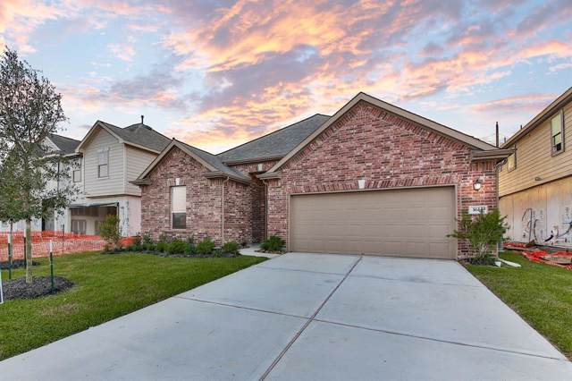 1614 Claire Creek Court, Katy, TX 77494 (MLS #72060056) :: Texas Home Shop Realty
