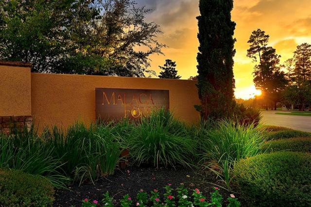 1487 Torrijos Court, Shenandoah, TX 77384 (MLS #7209880) :: Fairwater Westmont Real Estate