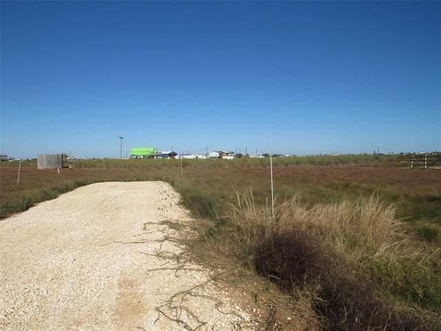 116 Bluewater, Sargent, TX 77414 (MLS #72151998) :: Michele Harmon Team