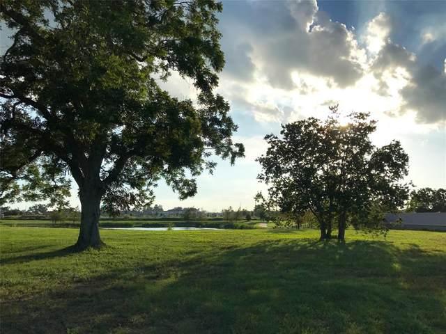 43 Riverstone Island, Sugar Land, TX 77479 (MLS #72240874) :: Caskey Realty