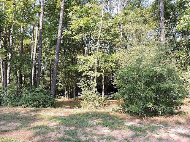 141 Pine Branch Drive, Montgomery, TX 77356 (MLS #72287391) :: Ellison Real Estate Team