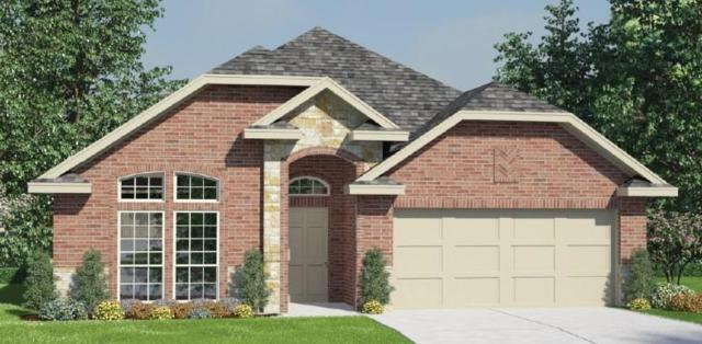 4043 Palmer Meadows Court, Katy, TX 77494 (MLS #72291546) :: Connect Realty
