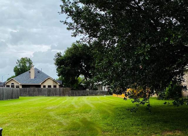 5242 Park View Drive, Willis, TX 77318 (MLS #72306242) :: Phyllis Foster Real Estate