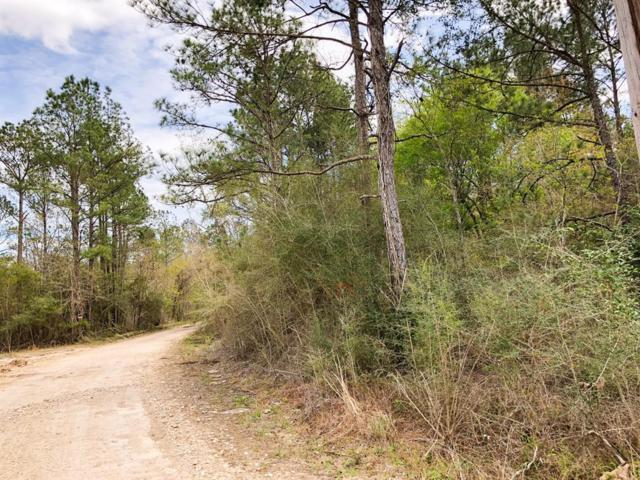 00000 Cr 3132, Mauriceville, TX 77626 (MLS #72306931) :: The Parodi Team at Realty Associates