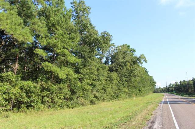 TBD Fm 980, Oakhurst, TX 77359 (MLS #72345180) :: The Bly Team