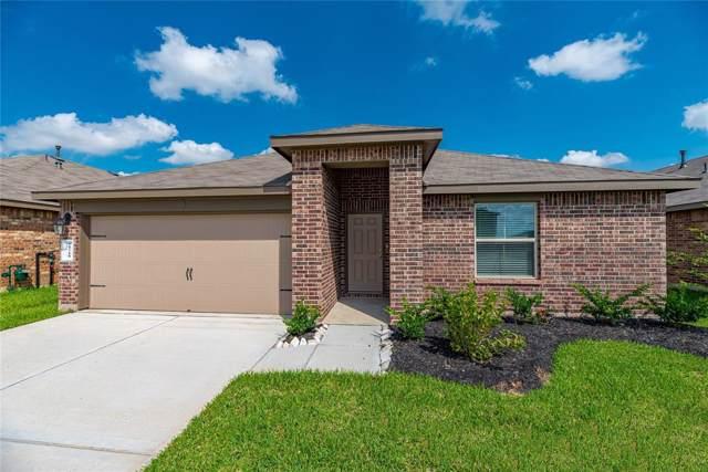 29710 Foliage Lane, Katy, TX 77494 (MLS #72395984) :: The Parodi Team at Realty Associates