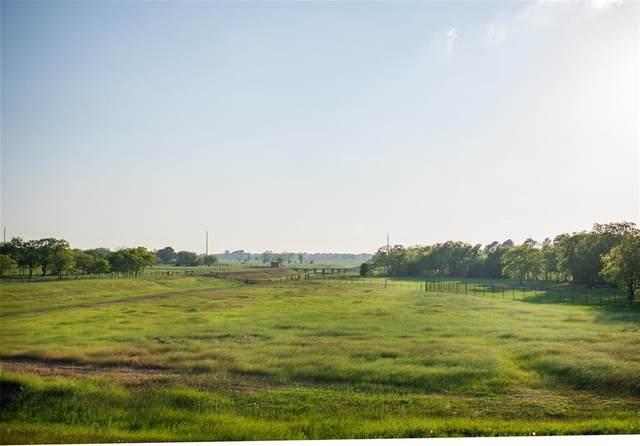 9710 Crescent Cross Drive, Needville, TX 77461 (MLS #7241006) :: Guevara Backman