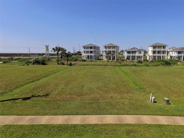 4111 Royal Tern Lane, Galveston, TX 77554 (MLS #72425069) :: Magnolia Realty