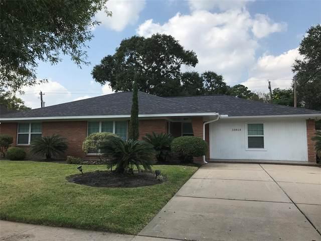 10814 Endicott Lane, Houston, TX 77035 (MLS #7254871) :: Lerner Realty Solutions