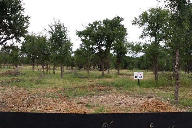 Lot 30 Trophy Oak Trail, Marble Falls, TX 78654 (MLS #72775116) :: The SOLD by George Team