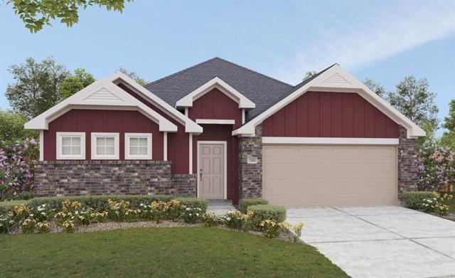 3819 Lumber Springs Lane, Katy, TX 77493 (MLS #72981221) :: The SOLD by George Team