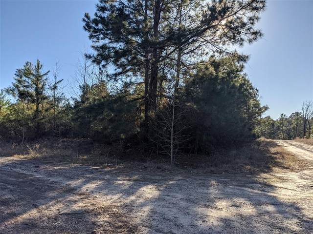 TBD N Settlers Way, Trinity, TX 75862 (MLS #7300858) :: Connect Realty