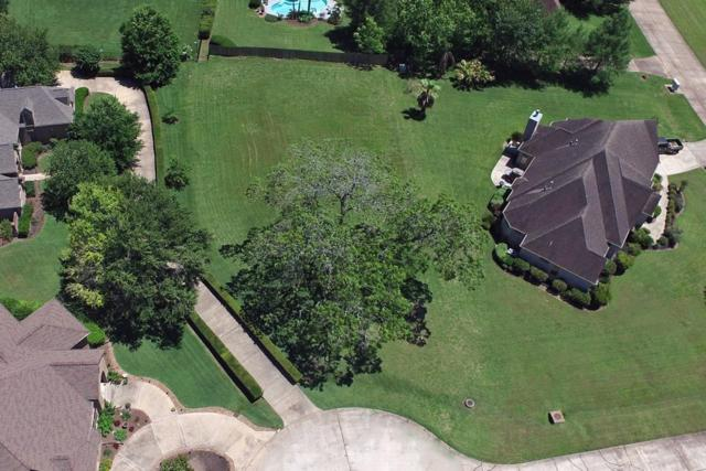 5310 Weyhill Court, Fulshear, TX 77441 (MLS #73021273) :: The SOLD by George Team