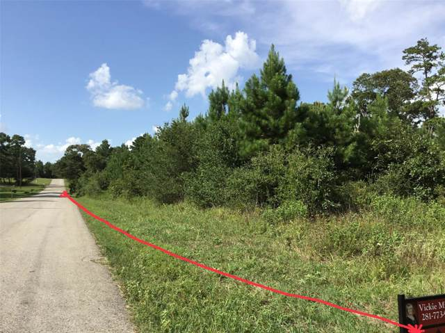 6530 County Road 302, Plantersville, TX 77363 (MLS #73069030) :: The Heyl Group at Keller Williams