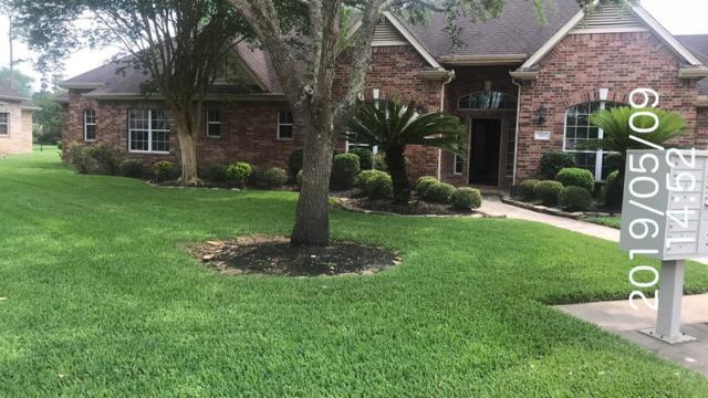 64 Champion Villa Drive, Houston, TX 77069 (MLS #73082453) :: Connect Realty