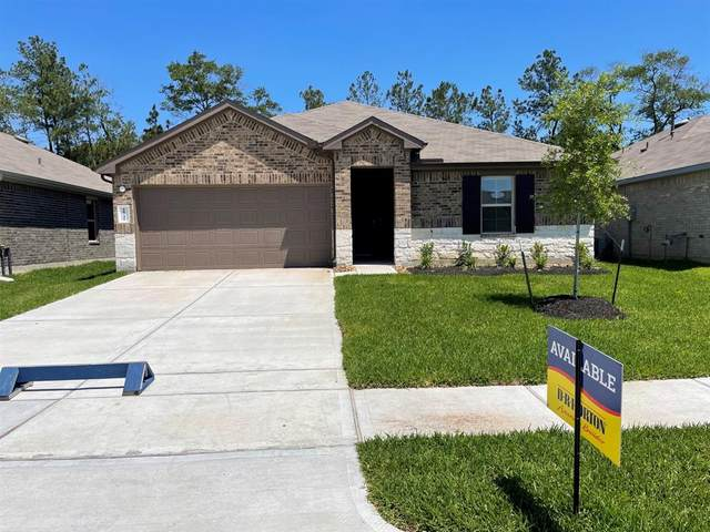 18241 Cascadia Mill Court, New Caney, TX 77357 (#73135717) :: ORO Realty