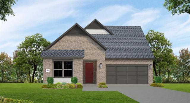 13223 Peony Meadow Trail, Houston, TX 77059 (MLS #73135958) :: Giorgi Real Estate Group