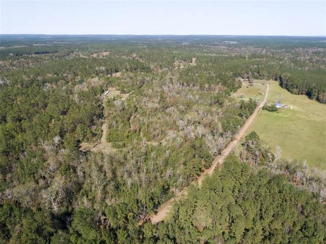 TBD County Rd 2088, Burkeville, TX 75932 (MLS #73139054) :: The Home Branch