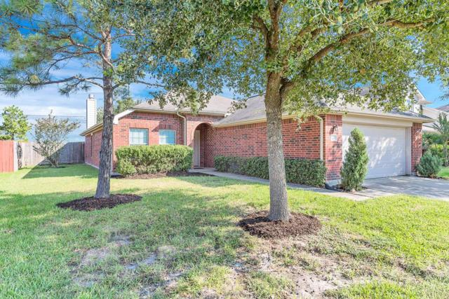 24414 Leachwood Drive, Katy, TX 77493 (MLS #73155786) :: See Tim Sell