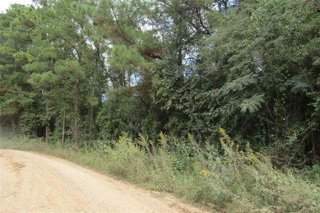 00 Pichetto Trail, Livingston, TX 77351 (MLS #73170548) :: Caskey Realty