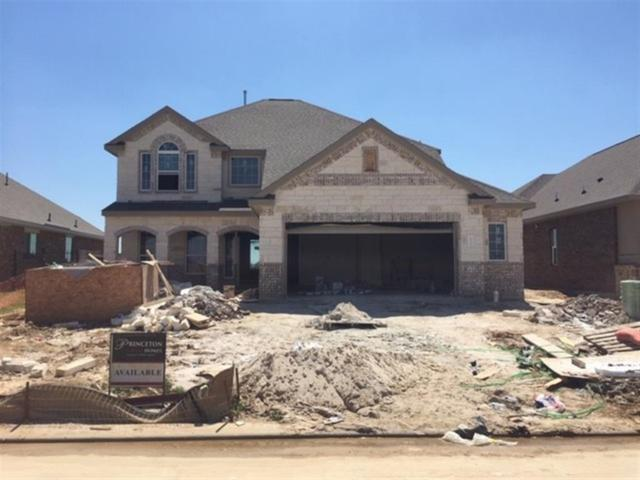 24111 Cannon Anello, Katy, TX 77493 (MLS #73182398) :: The Home Branch