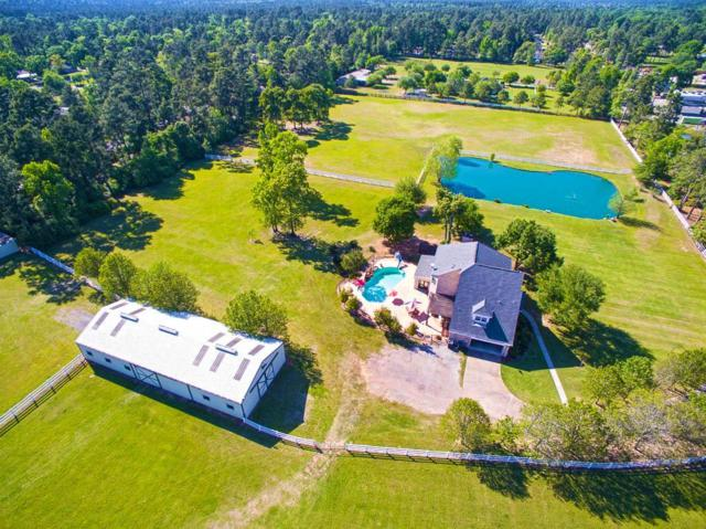 29545 Dobbin Hufsmith Road, Magnolia, TX 77354 (MLS #73214295) :: Fairwater Westmont Real Estate