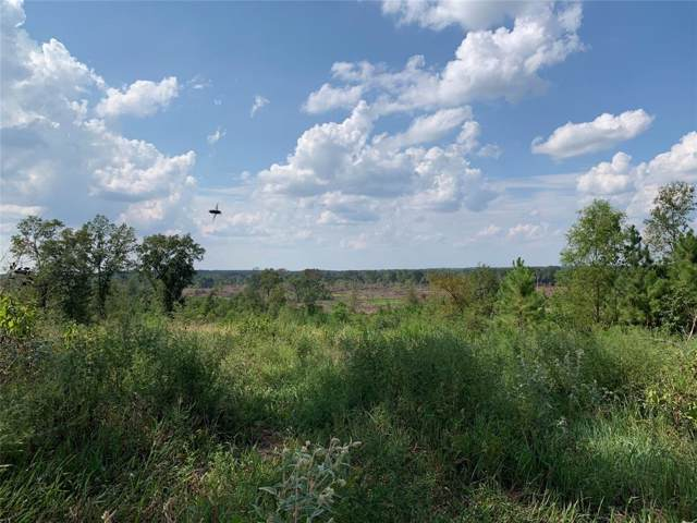 000 County Road 4293, Tenaha, TX 75974 (MLS #73255410) :: TEXdot Realtors, Inc.
