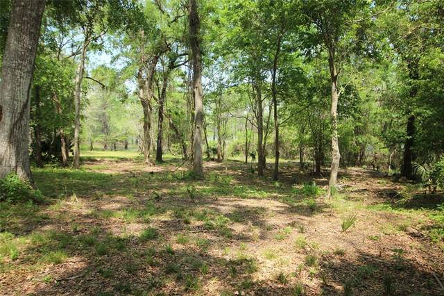 0 County Road 417 Parkway Drive, Dayton, TX 77535 (MLS #73304911) :: Green Residential