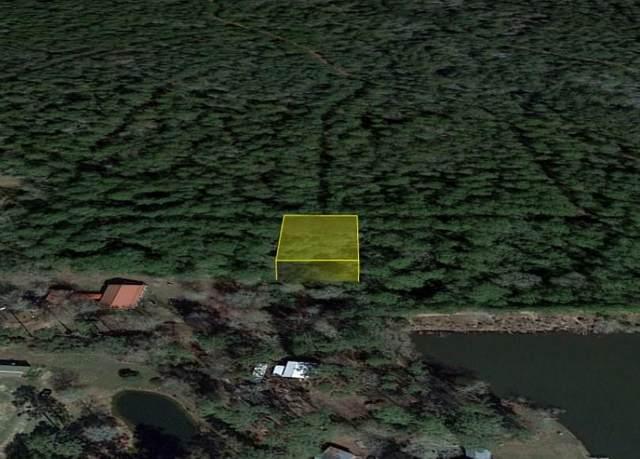0 E Fm 2979, Hempstead, TX 77445 (MLS #73332618) :: My BCS Home Real Estate Group