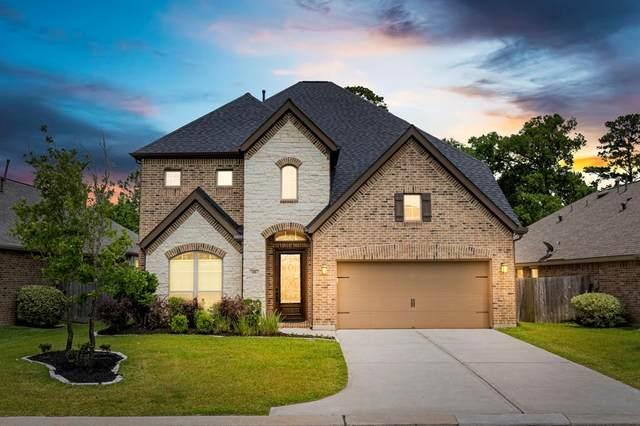195 Capriccio Lane, Montgomery, TX 77316 (MLS #73337101) :: The SOLD by George Team