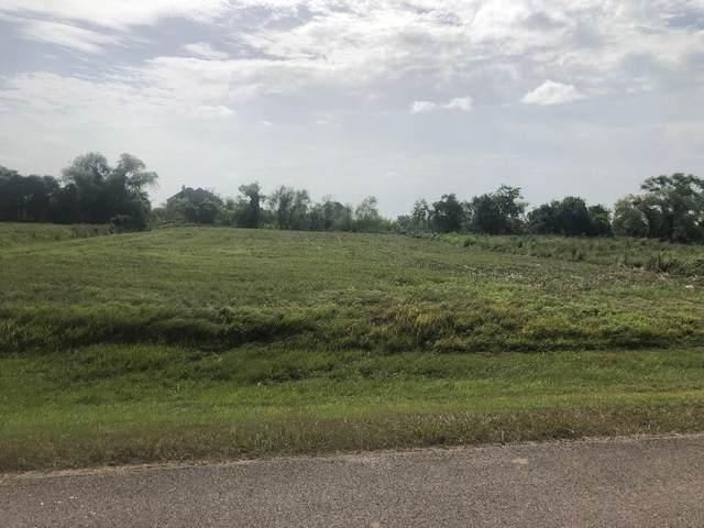 702 Lakeland Circle, Rosharon, TX 77583 (MLS #73365759) :: Green Residential