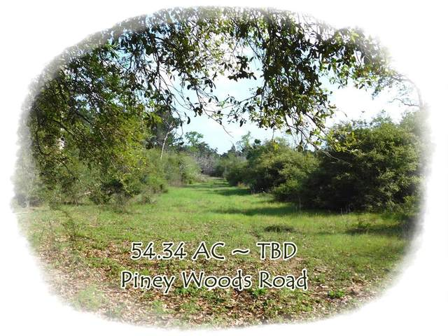 TBD Piney Woods Road, Alleyton, TX 78935 (MLS #73375110) :: The Queen Team
