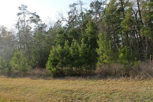 27615 W Balsam Fir Circle, Spring, TX 77386 (MLS #73376007) :: Krueger Real Estate