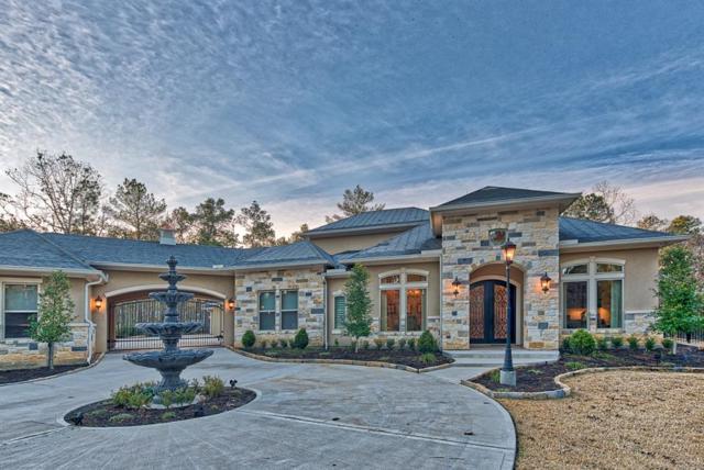 28402 Meadow Forest, Magnolia, TX 77355 (MLS #73515541) :: Giorgi Real Estate Group