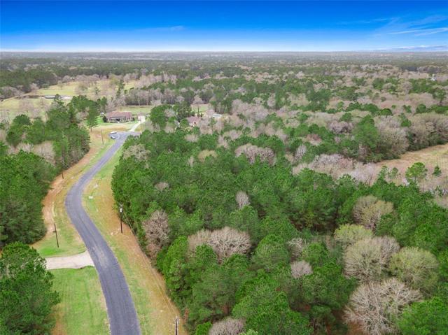 28280 Horse Shoe Lane, Waller, TX 77484 (MLS #73522542) :: Texas Home Shop Realty