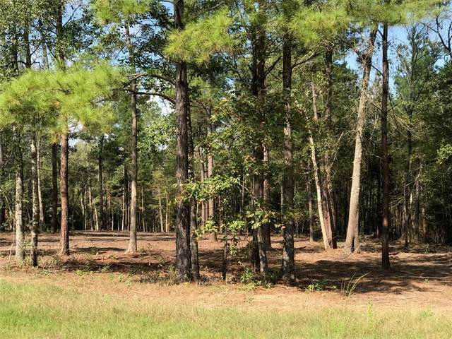 123 Ranger, Huntsville, TX 77340 (MLS #73582890) :: Giorgi Real Estate Group