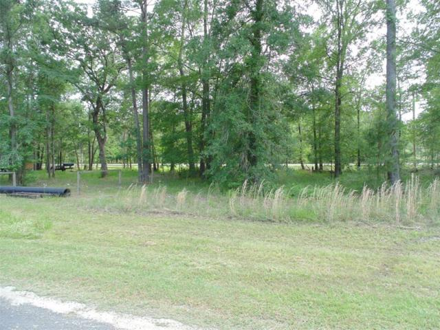 TBD W Woodland Shores Drive Drive, Point Blank, TX 77364 (MLS #73591850) :: Texas Home Shop Realty