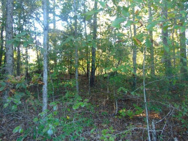 00 Fm 353, San Augustine, TX 75972 (MLS #73610100) :: Connect Realty