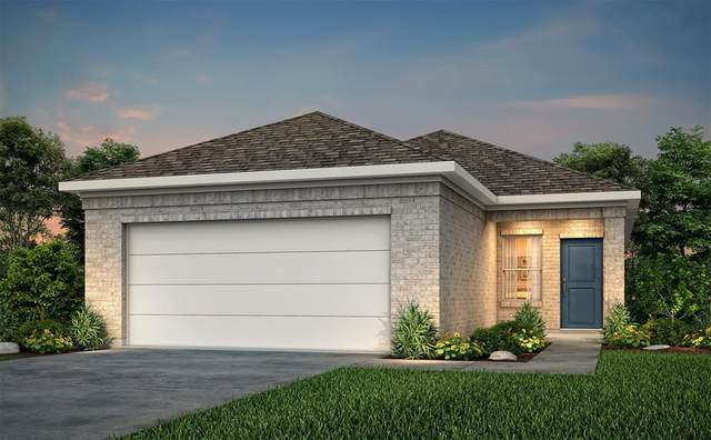 20010 Northpark Oak Lane, Porter, TX 77365 (MLS #73617621) :: The SOLD by George Team