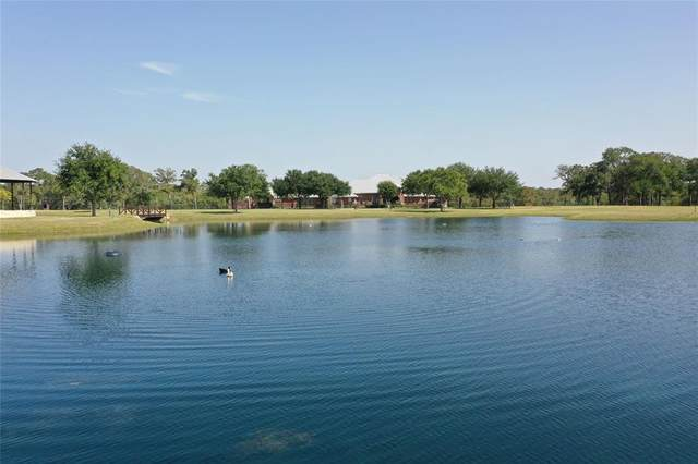 1039 Zimmerscheidt Road, Columbus, TX 78934 (MLS #73629116) :: Green Residential
