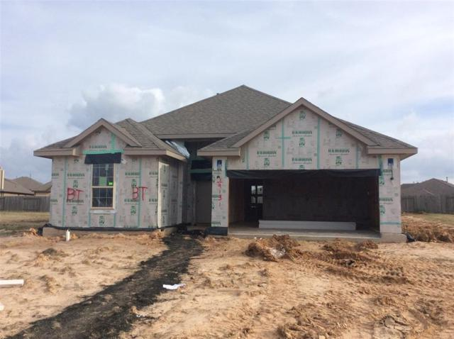 29131 Korsman Landing Drive, Katy, TX 77494 (MLS #73719521) :: Texas Home Shop Realty
