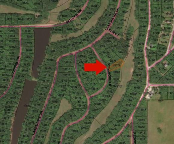 Lot 22 Sycamore, Hempstead, TX 77445 (MLS #73791341) :: The SOLD by George Team