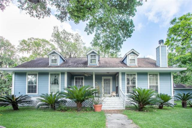 20203 Oak Forest Dr Drive, Damon, TX 77430 (MLS #73820395) :: The Heyl Group at Keller Williams